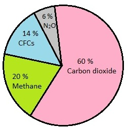 AIPMT Biology - Greenhouse gases and their contribution in Global Warming